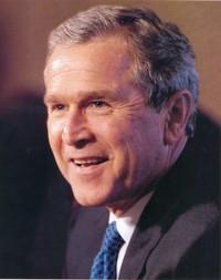 Bush2_3